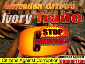 Corruption drives Ivory trade