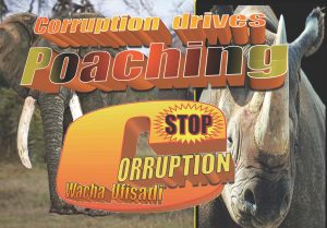 Corruption drives Poaching - 2