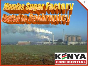 Mumias factory looted to bankruptcy