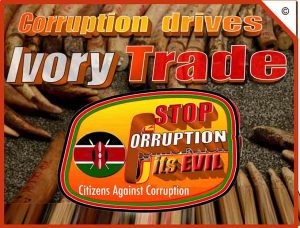 corruption-drives-ivory-trade