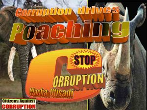 corruption-drives-poaching-2