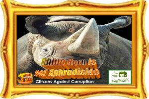 rhino-horn-is-not-aphrodisiac