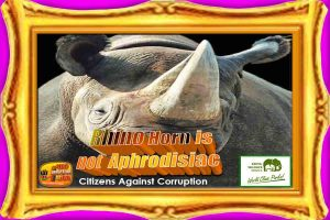 rhino-horn-is-not-aphrodisiac-bordered